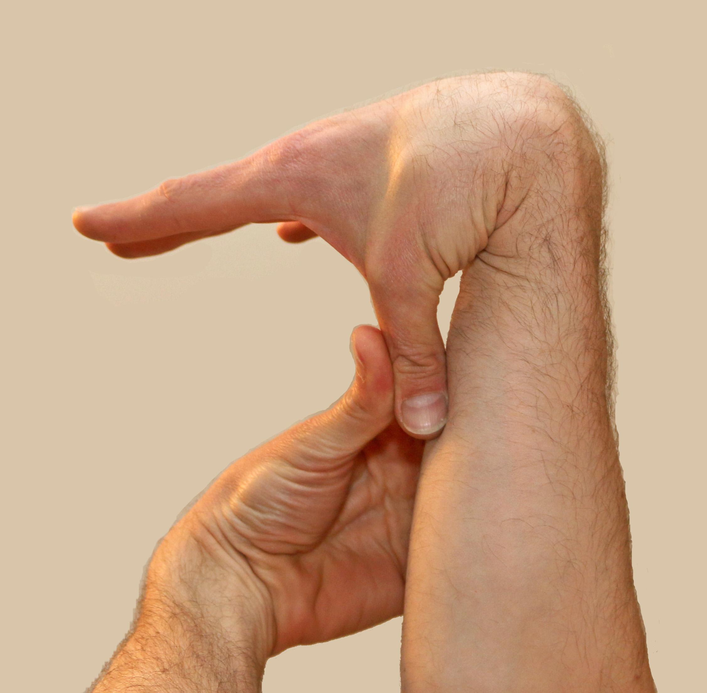 картинки деформация руки находится сосновом лесу