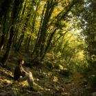Quiet contemplation in the forest of St Francis's Hermitage which is situated up the hill from Fontemaggio